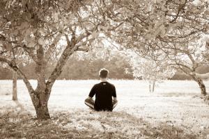 Sebastien wiertz meditation unter baeumen