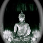 The wandering angel konzentrierte meditation buddah