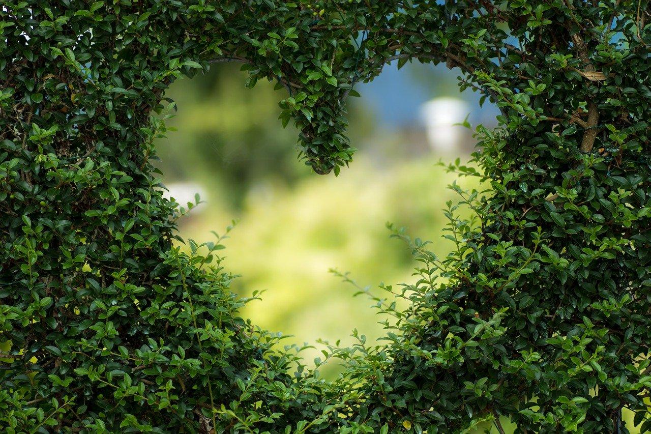 Liebe, Verliebtsein
